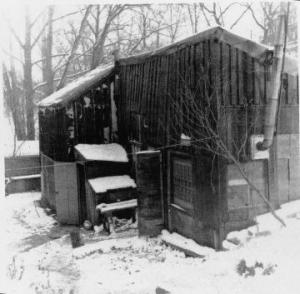 Shack-in-winter